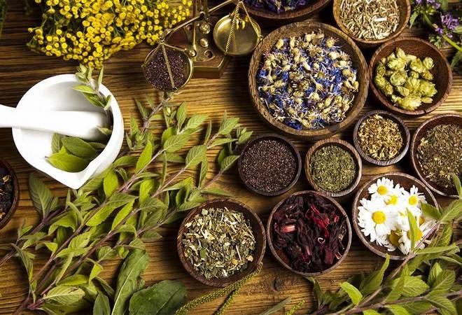 Травы от варикоза на ногах должны обладать лечебными свойствами ...