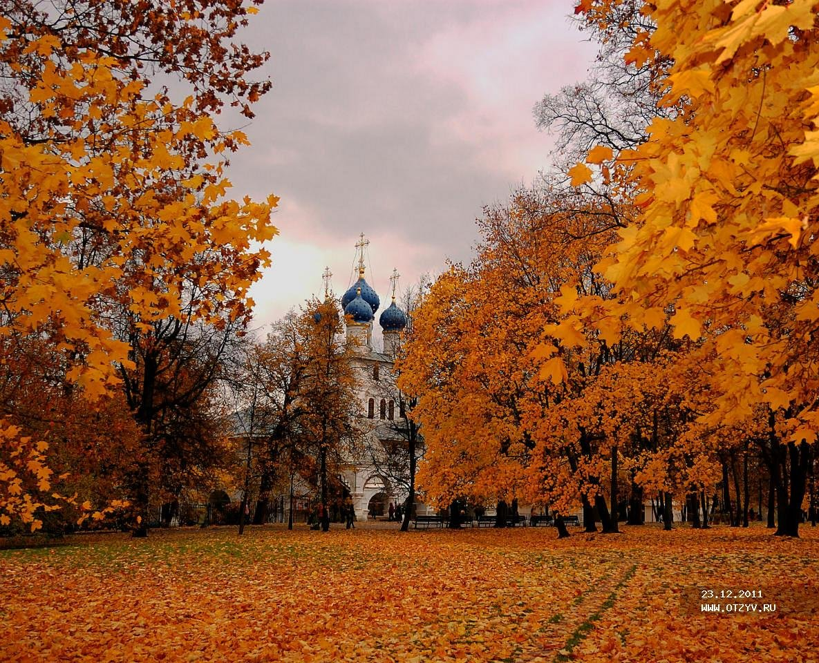 Москва осенняя картинки