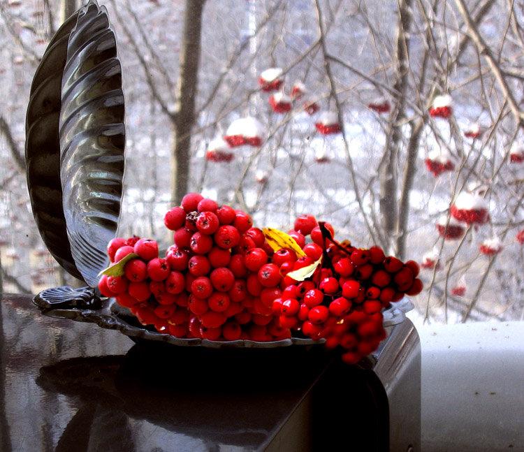 уже красна рябины гроздь фото