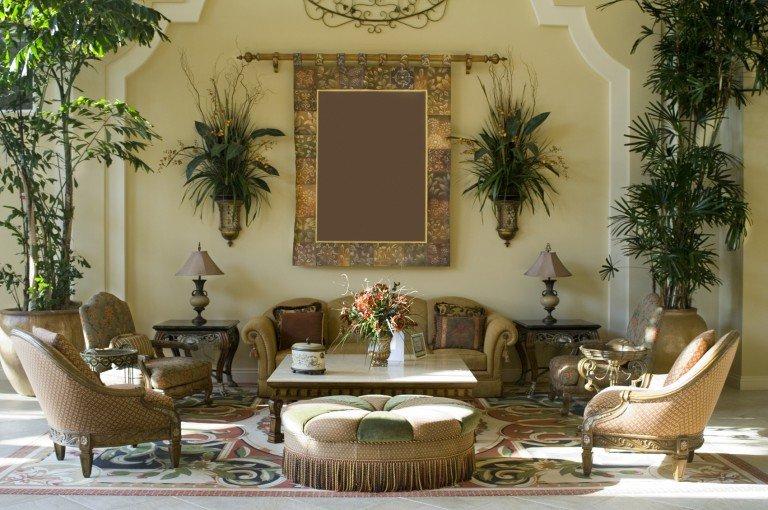 Комнатные растения в интерьере  на стене