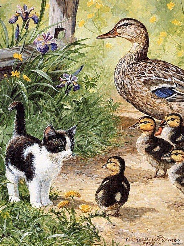 Картинки с утками в стиле кантри