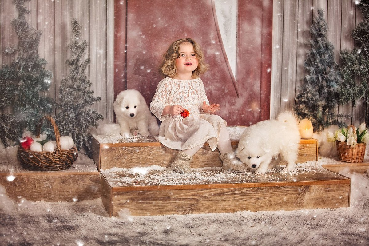 Новогодняя фотосессия с кроликами в спб
