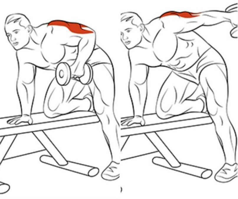 Трицепс картинки упражнения