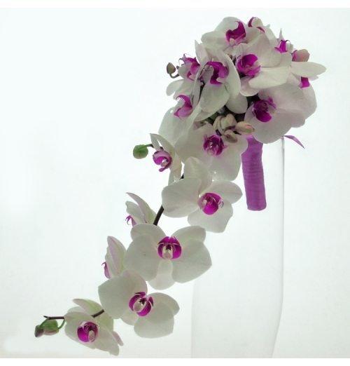 Букет капля из орхидей своими руками, ботаники