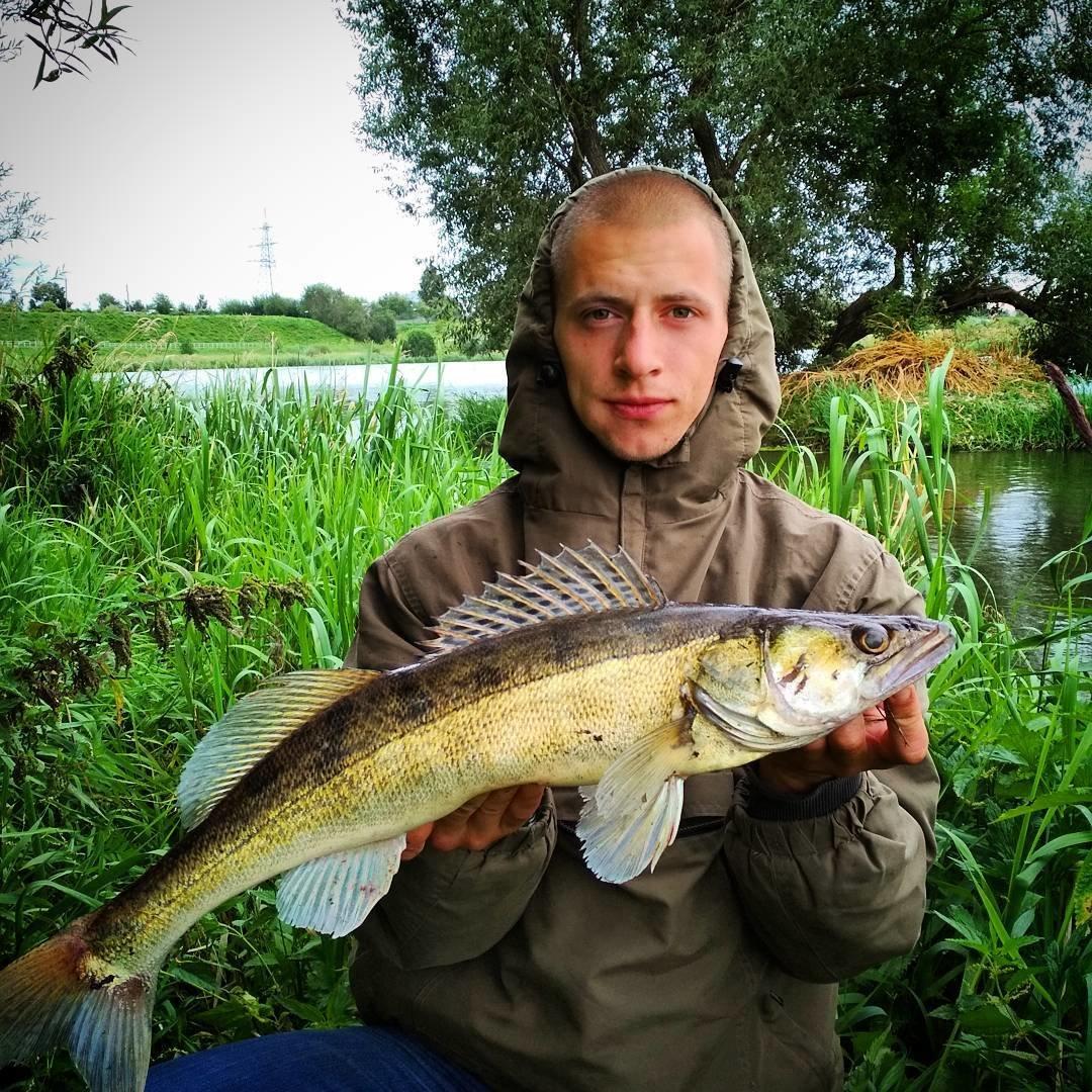 fishhungry в череповце