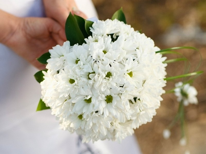 Цветов, кустовая хризантема свадебный букет