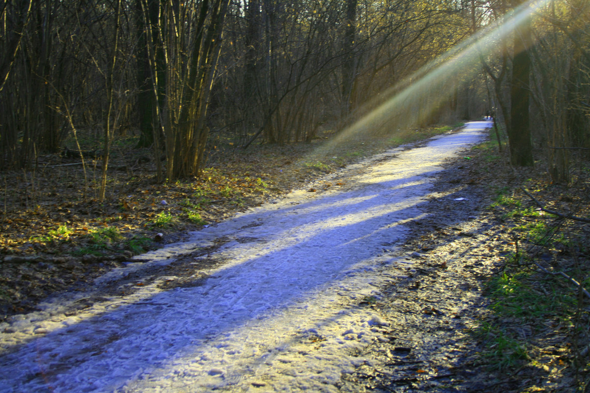 Весенний луч солнца картинки