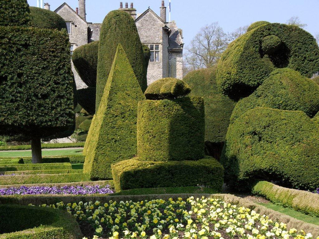 фамилия сад правильной геометрической формы фото эротические фото