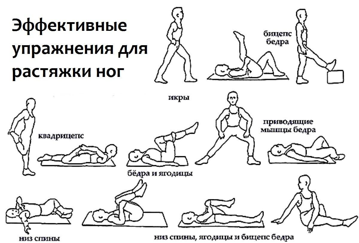 Комплекс упражнений для похудения ляшек