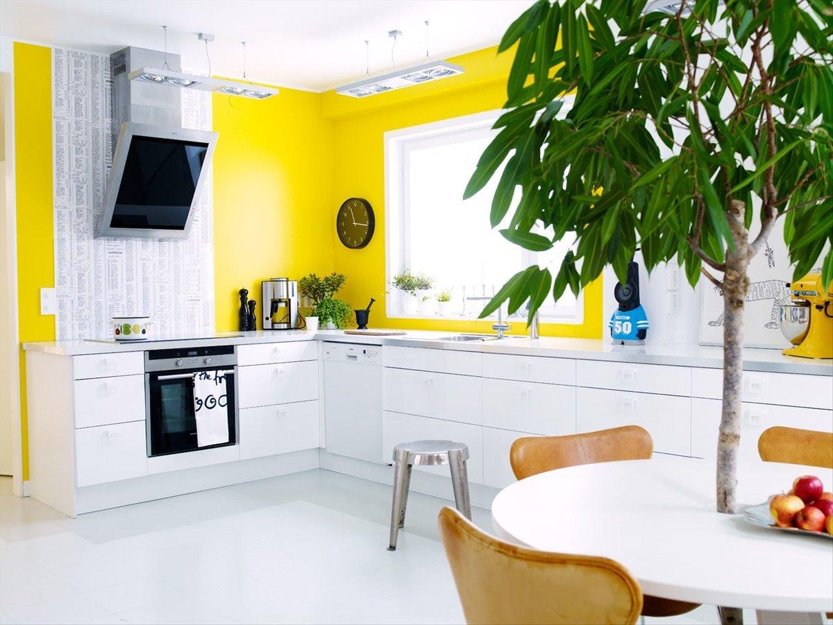 фото с лимоном на кухне