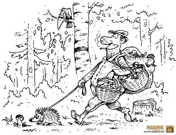Любимому, картинки смешные про грибников