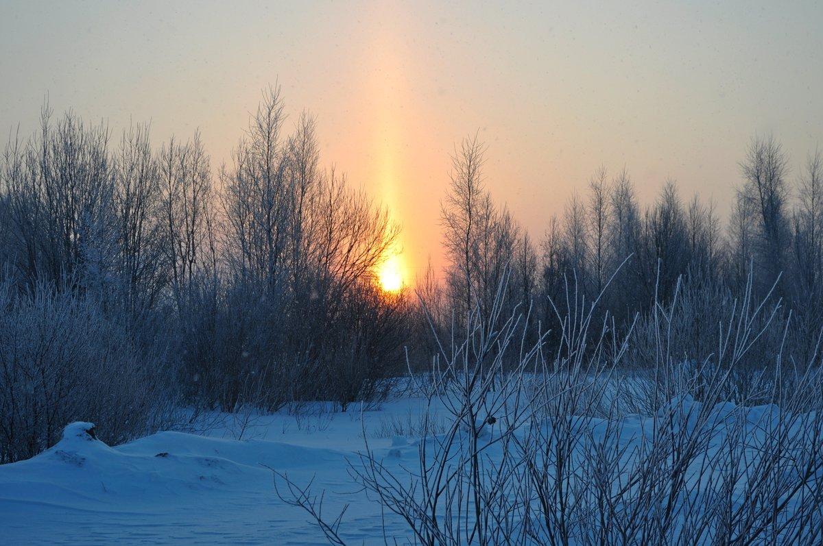 горгона восход зимой фото ресницы можно нарастить