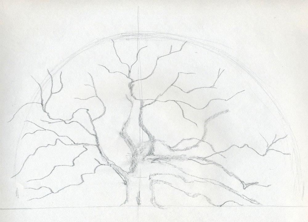 картинки как рисовать дуб месторождениях такие