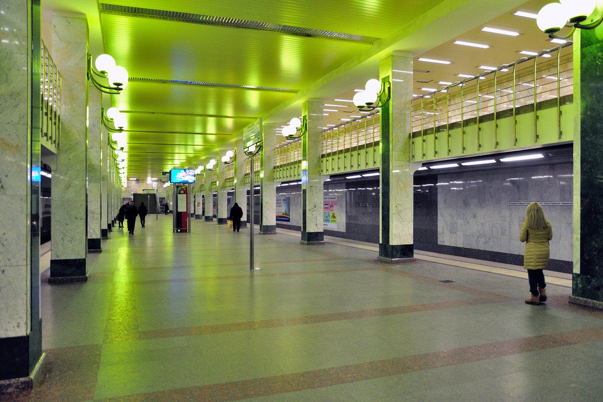картинка метро бульвар дмитрия донского победителей