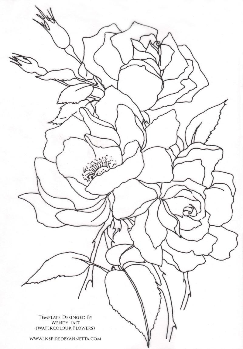 Рисунки цветов карандашом на открытке