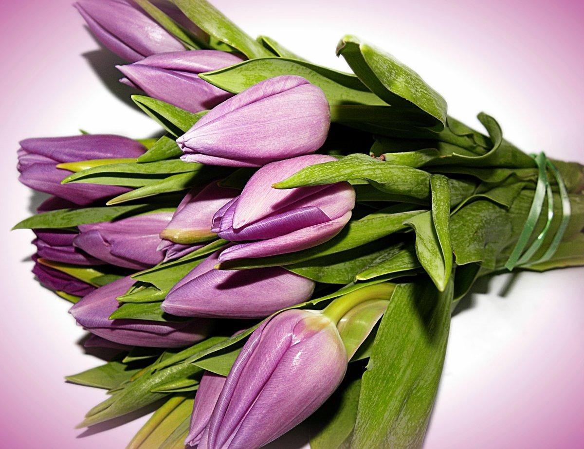 считаются картинки цветов весенних букетов цветов раз