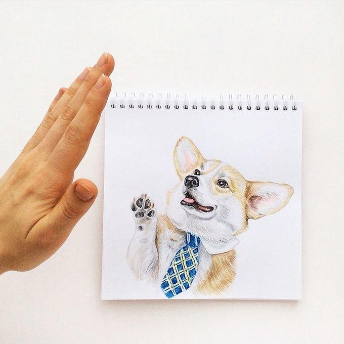 Как нарисовать прикольные картинки с собаками