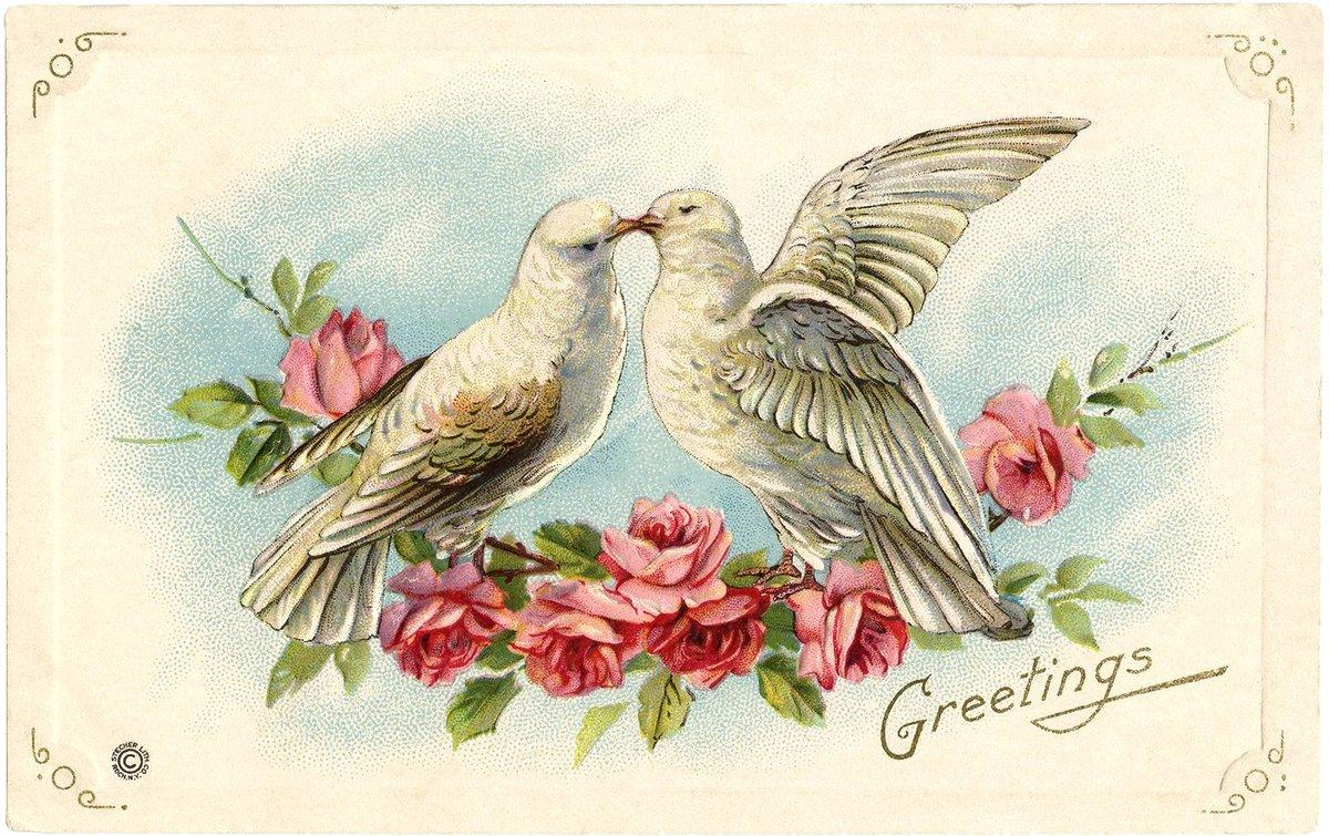 Люблю доченьку, открытка на венчание голуби