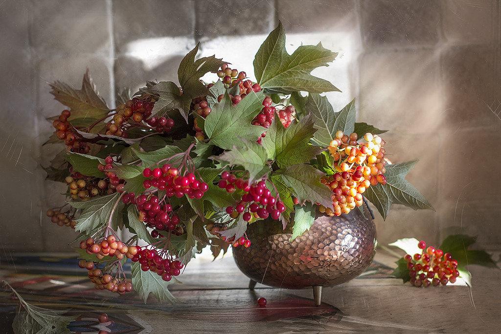 Калина осенняя фото букет с ягодами