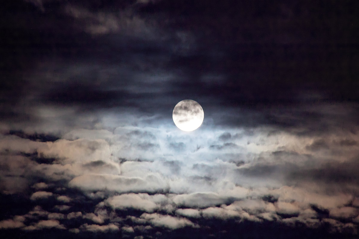 решил картинки луна облака ночью хот-дог