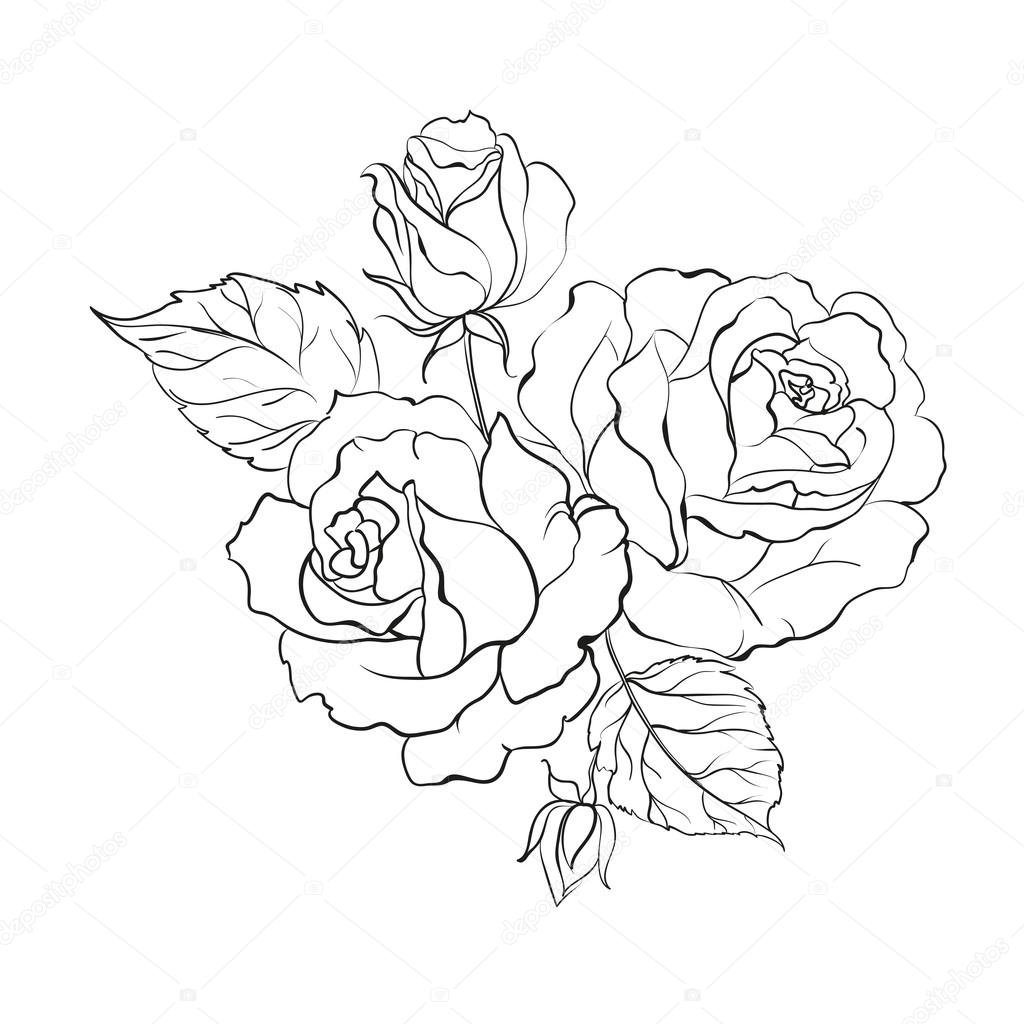 Drawn bouquet outline flower pencil and in color drawn bou card drawn bouquet outline flower pencil and in color drawn bou izmirmasajfo