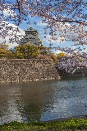 Дыхание весны, shirophoto для «Fotodom.ru».  Самурайский замок Осака с цветущей сакурой.