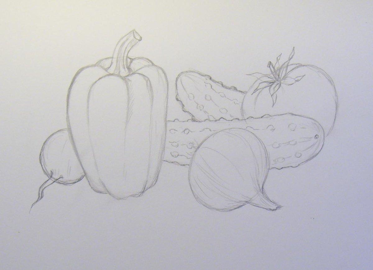 художественных картинки фруктов и овощей рисовать карандашом любым изображением наличии