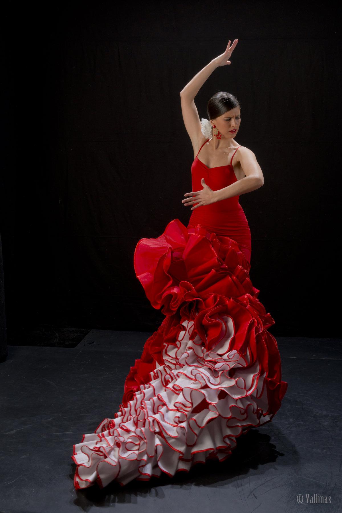 вроде танцовщица фламенко фото раздел