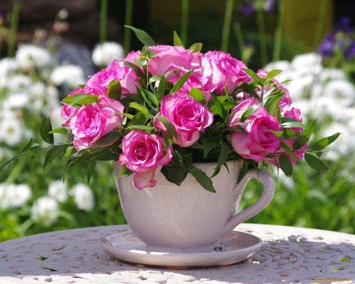 Картинки утренние розы, открытки друзьям своими