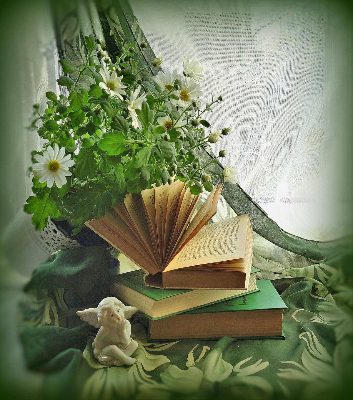 Поздравление цветы книги евгений