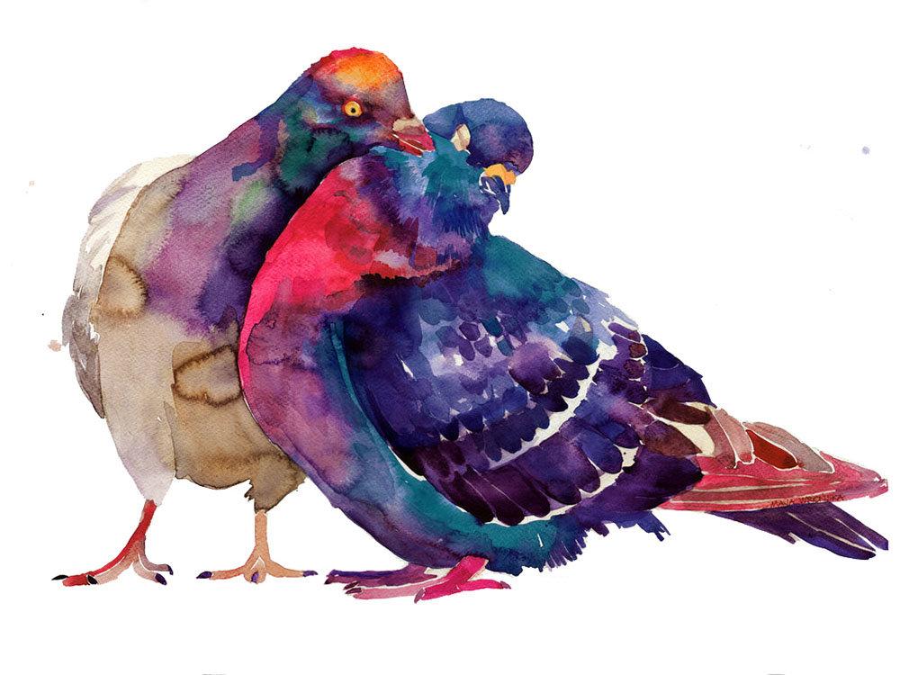 Смешные рисунки с голубями, картинки прикольных