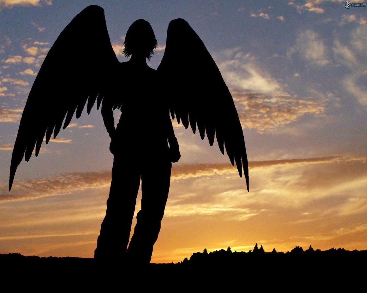 Черный ангел картинки, родители