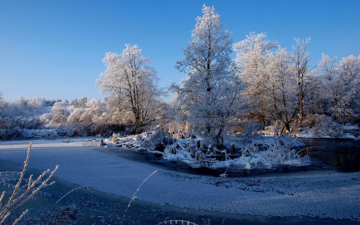 уютное, красивый зимний пейзаж фото для обоев каждого настораживает