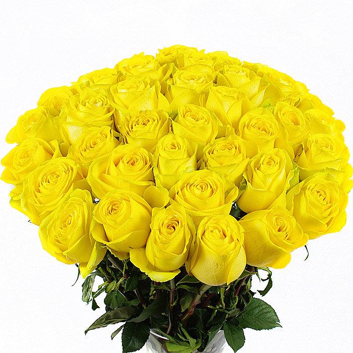 Желтые розы картинки красивые букеты, утро
