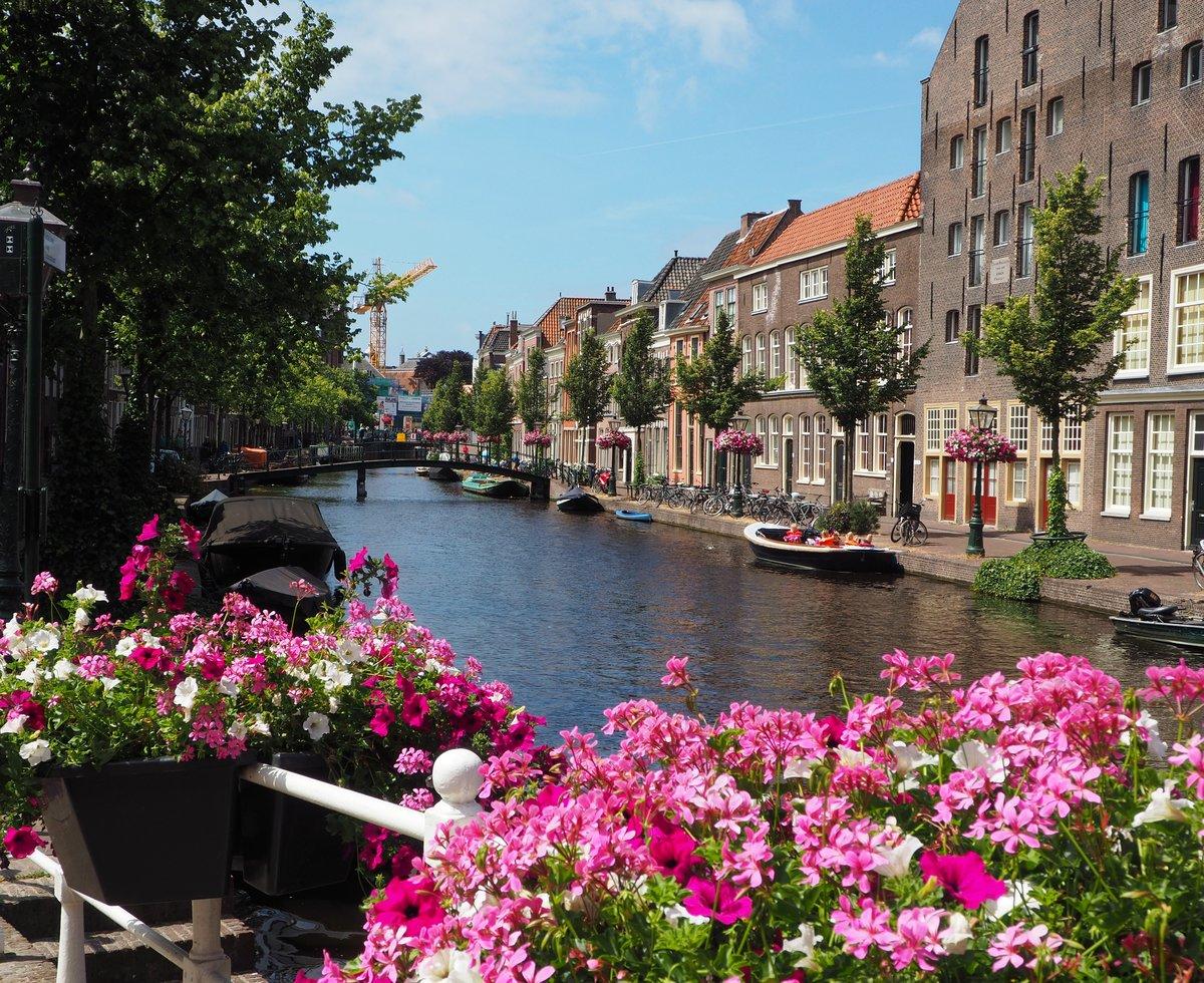 там фото амстердама в хорошем качестве лето завершили