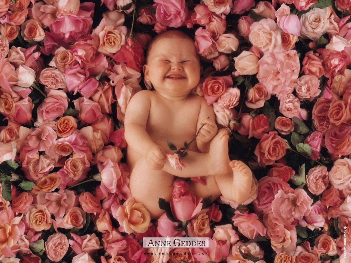 Открытки анны геддес с новорожденным, прикол картинка