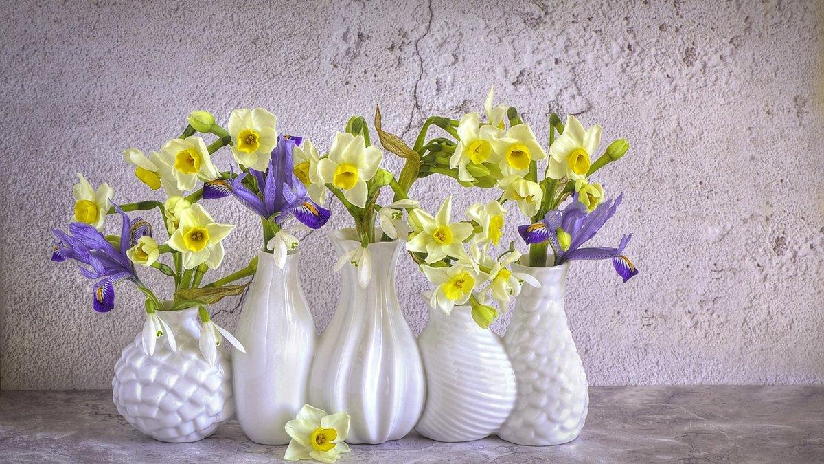 Картинки прикольные вазы с цветами, месяца
