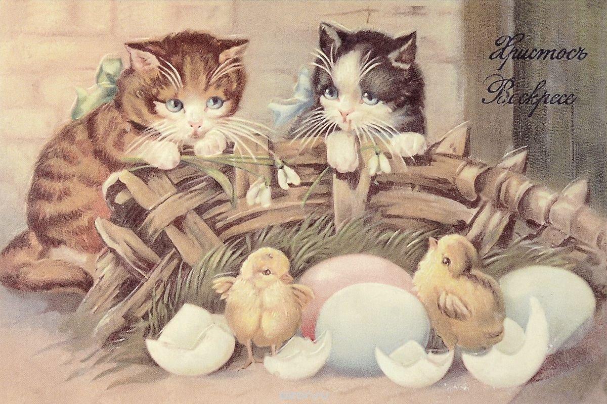 Открытка, винтажные картинки с котятами