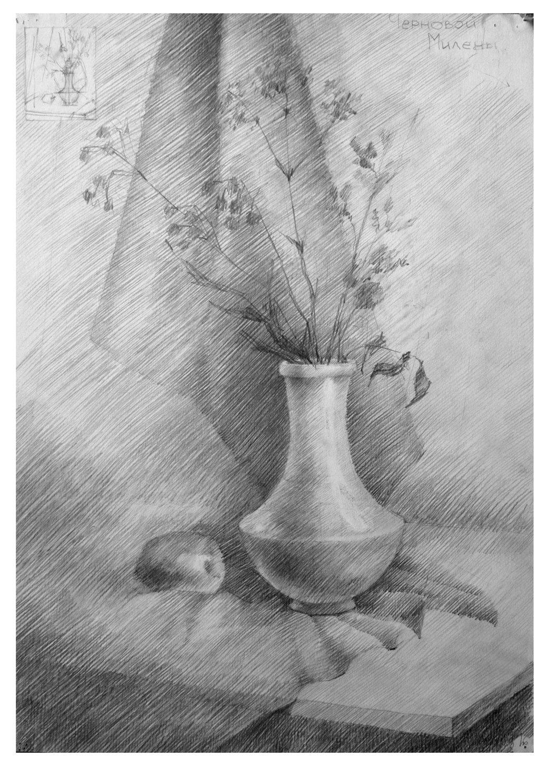 Картинки натюрморт карандашом цветы каталоге водостокстрой