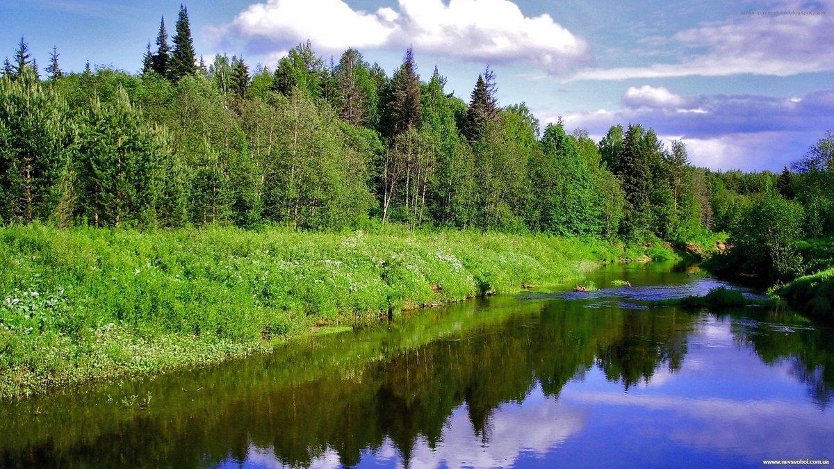 Надписью поел, картинка с рекой и лесом