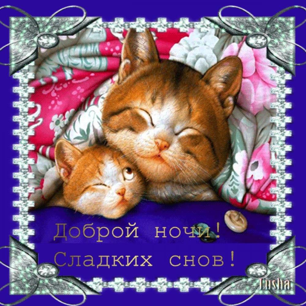 Самые красивые открытки спокойной ночи