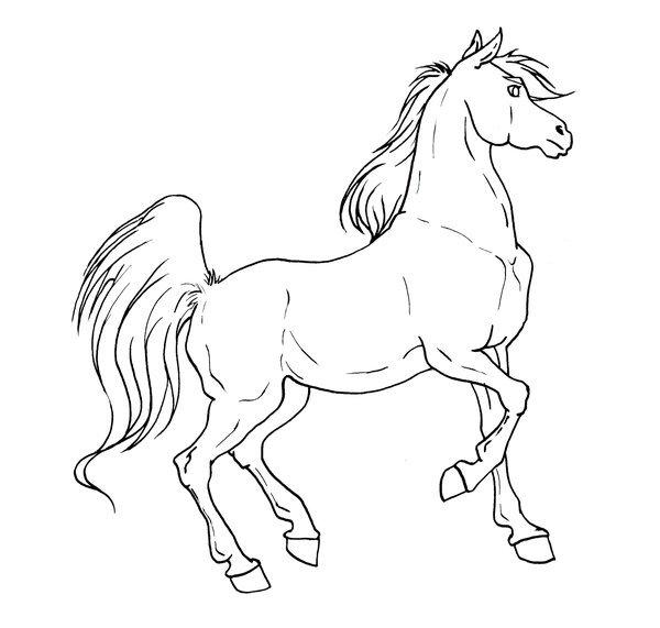 Доставки правильног, смешная лошадь рисунок карандашом поэтапно