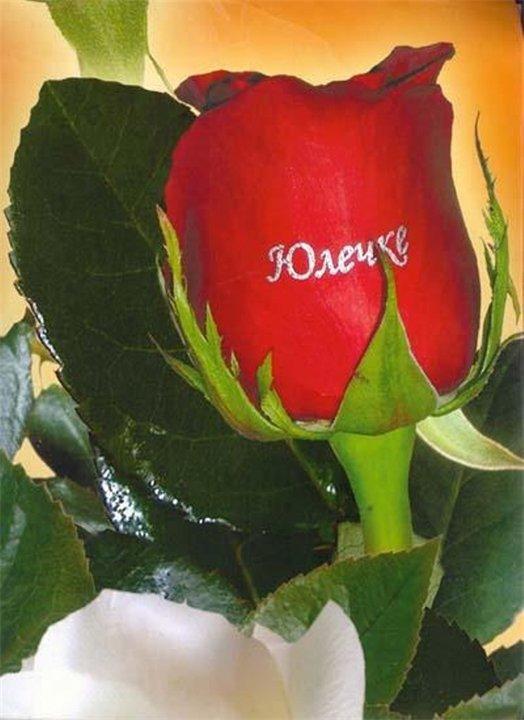 Открытка юлия ты лучше, цветы