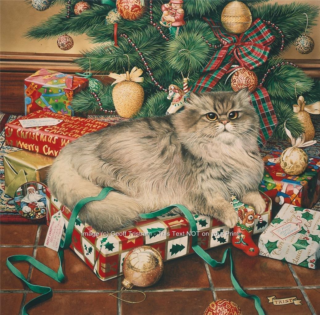 Новогодние открытки котов