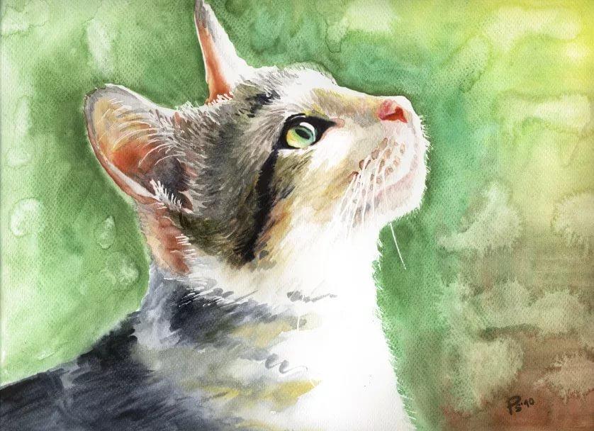 Рисунки кошки поэтапно гуашью цена пневматическая