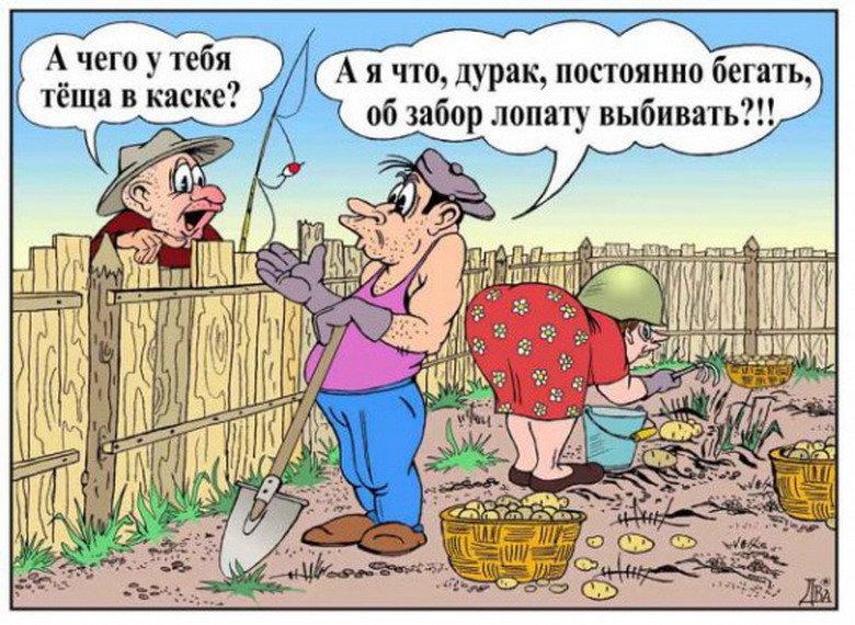 Тропики, смешные картинки про огород