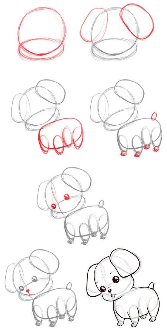 картинки нарисовать собаку карандашом поэтапно для начинающих