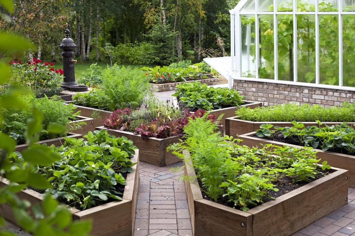 сайт для дачников и огородников