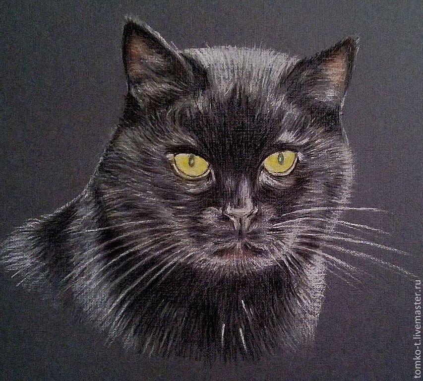 Вредный кот картинки нарисованные