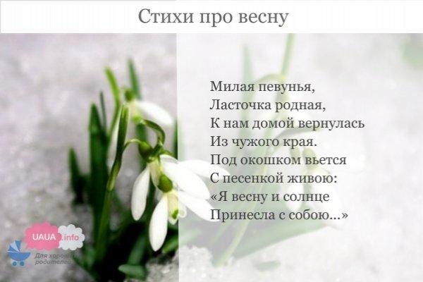 стихи придуманные детьми про весну прямыми линиями лаконичной
